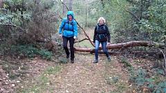 Hindernisse - kein Problem für sportliche Wandererer©TuS Leese