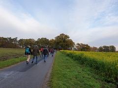 Neben blühenden Feldern - Wandern im November!©TuS Leese